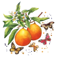 Servietten 24x24 cm - Fruity Butterflies