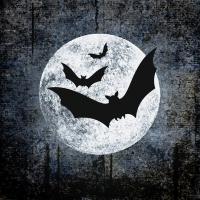 Servietten 33x33 cm - Moon and Bats