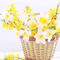 Servietten 33x33 cm - Daffodil basket