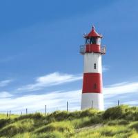 Servietten 33x33 cm - Lighthouse