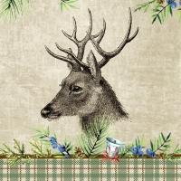 Servietten 24x24 cm - Deer