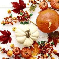 Servietten 24x24 cm - Pumpkin & leaves