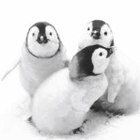 Servietten 33x33 cm - Penguin friends