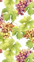 Servietten 40x40 cm - Grapes