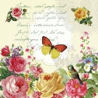 Servietten 33x33 cm - Portrait of butterfly