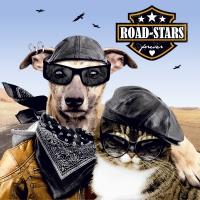 Servietten 33x33 cm - Road-stars