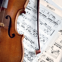 Servietten 33x33 cm - Sonate