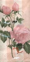 Taschentücher antyique rose