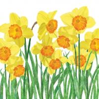 Servietten 25x25 cm - Yellow Daffodilscm