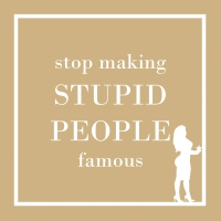 Servietten 25x25 cm - Stupid People