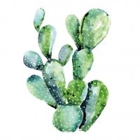 Servietten 25x25 cm - Cactus