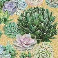 Servietten 25x25 cm - Succulents