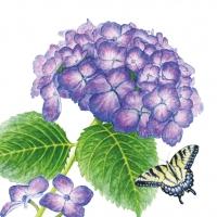 Servietten 25x25 cm - Hydrangea & Butterfly
