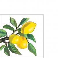 Servietten 25x25 cm - Lemon Musée white  25x25 cm