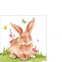 Servietten 25x25 cm - Mr. Rabbit