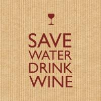 Servietten 33x33 cm - Save Water