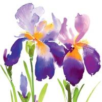 Servietten 33x33 cm - Lila Iris