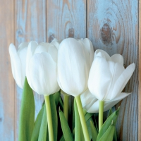 Servietten 33x33 cm - White Tulips on Wood