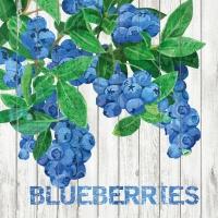 Lunch Servietten Harvest Blueberries
