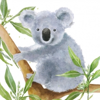 Servietten 33x33 cm - Tropical Koala Bear
