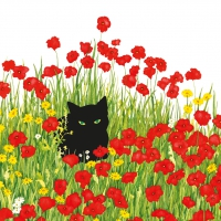 Servietten 33x33 cm - Black Cat Poppies