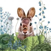 Servietten 33x33 cm - Chou Chou Chou Bunny