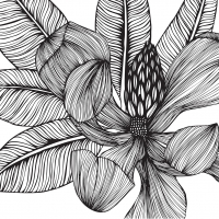 Servietten 33x33 cm - Tropical Flower BW