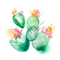 Servietten 33x33 cm - Kaktus Symphonie