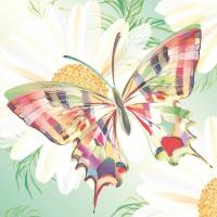 Servietten 33x33 cm - Echo Butterfly