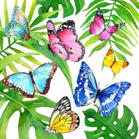 Servietten 33x33 cm - Tropical Butterflies