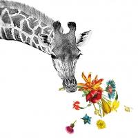 Servietten 33x33 cm - Glückliche Giraffe