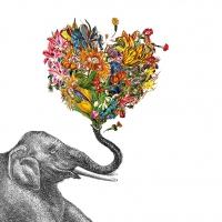 Servietten 33x33 cm - Happy Elephant 33x33 cm