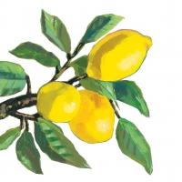 Servietten 33x33 cm - Lemon Musée white