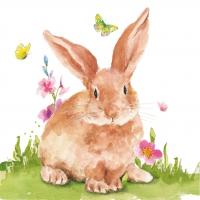 Servietten 33x33 cm - Mr. Rabbit Napkin 33x33