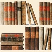 Servietten 33x33 cm - Libri Antichi Napkin 33x33