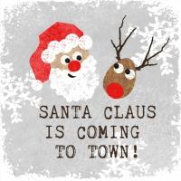 Servietten 25x25 cm - Weihnachtsmann*