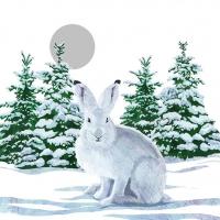 Cocktail Servietten Snow Rabbit