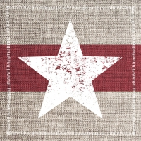 Servietten 33x33 cm - Star Fashion burgundy