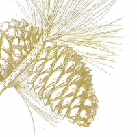 Lunch Servietten Engraved Pine Cone