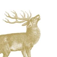 Servietten 33x33 cm - Engraved Stag