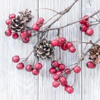 Servietten 33x33 cm - Rote Beeren auf Holz