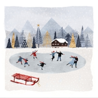 Servietten 33x33 cm - Mountain Skating