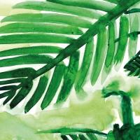 Servietten 33x33 cm - Pine