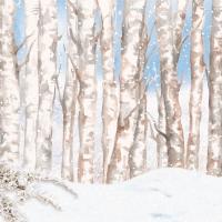 Servietten 33x33 cm - Winter Wonderland 33x33 cm