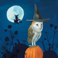 Servietten 33x33 cm - Wizard´s Halloween