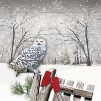 Servietten 33x33 cm - Wintry Owl Napkin 33x33