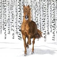 Servietten 33x33 cm - Wilderness Horse Napkin 33x33