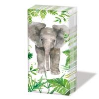 Taschentücher - Tropical Elephant