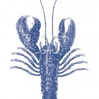Lunch Servietten Lobster