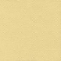 50 Tissue Servietten 33x33 cm - Tissue Crema